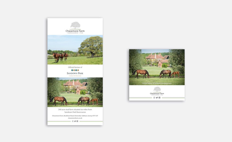 Chasemore Farm Race card adverts designed by Pick Me Design ©